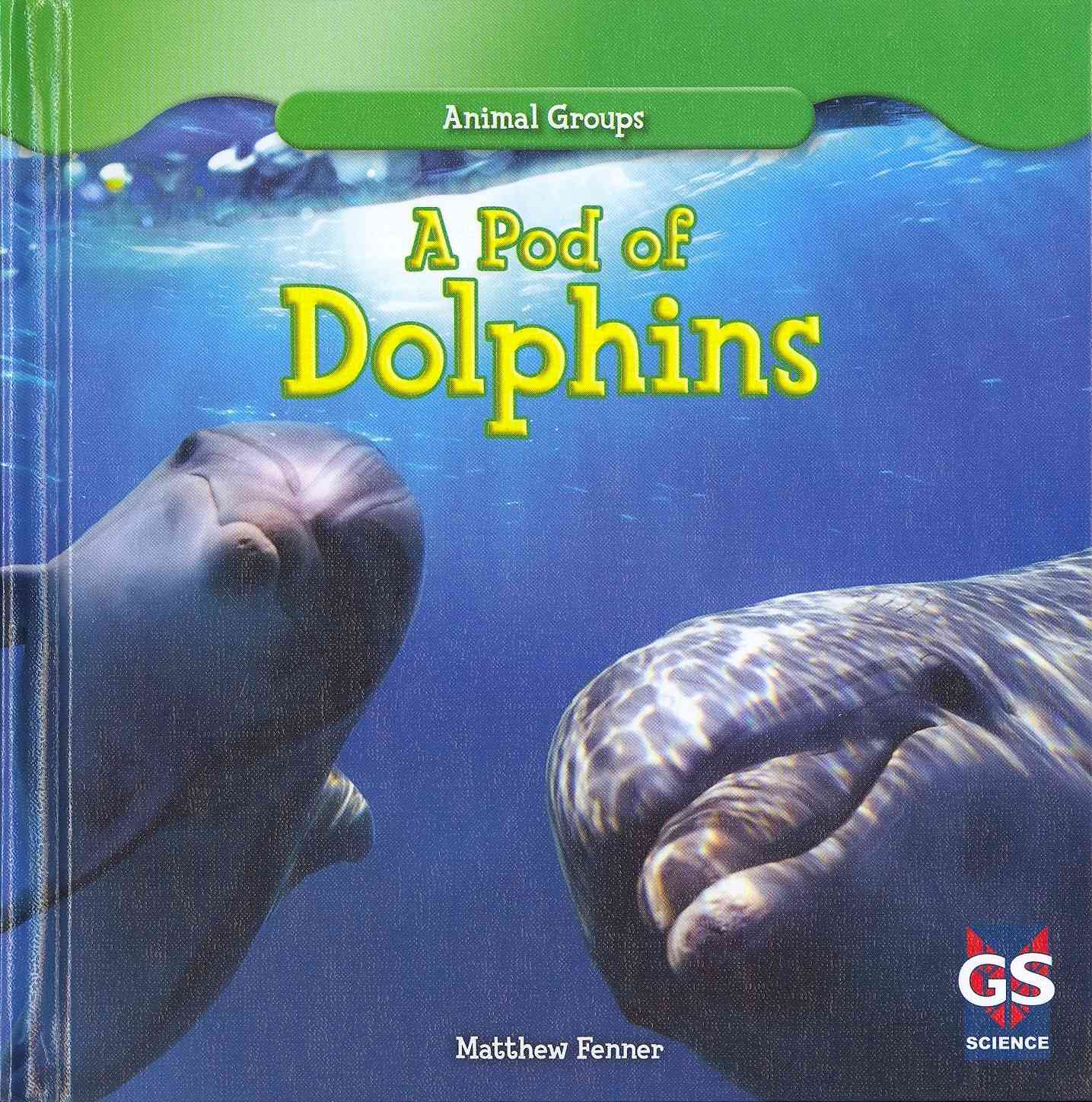 A Pod of Dolphins By Fenner, Matthew